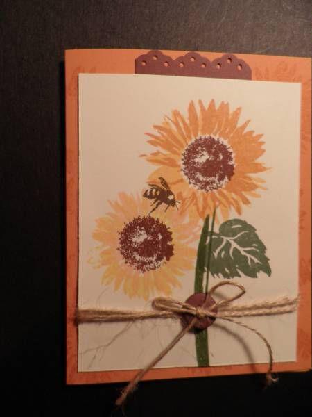 Sunflowers_by_CindyJinCT