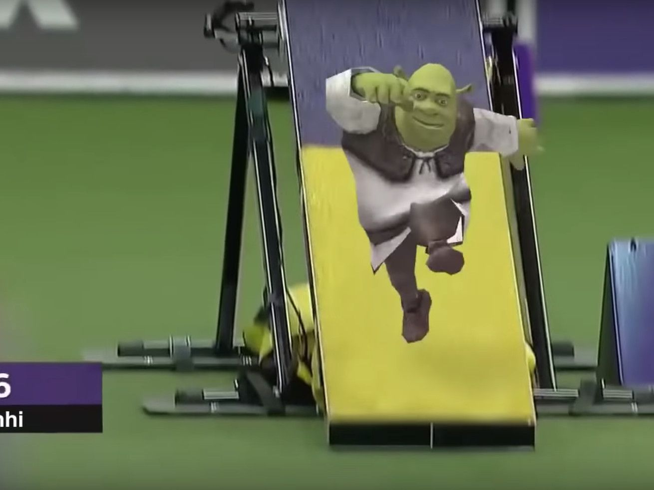 This Video Of Tiny Shrek Running An Agility Course Honestly Belongs In The Louvre Shrek Running Memes Funny Gif