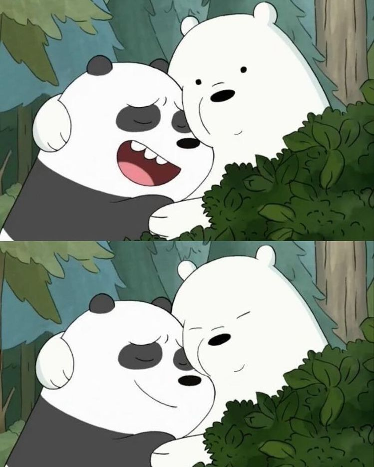 الدببه الثلاثه Ice Bear We Bare Bears Bear Wallpaper We Bare Bears