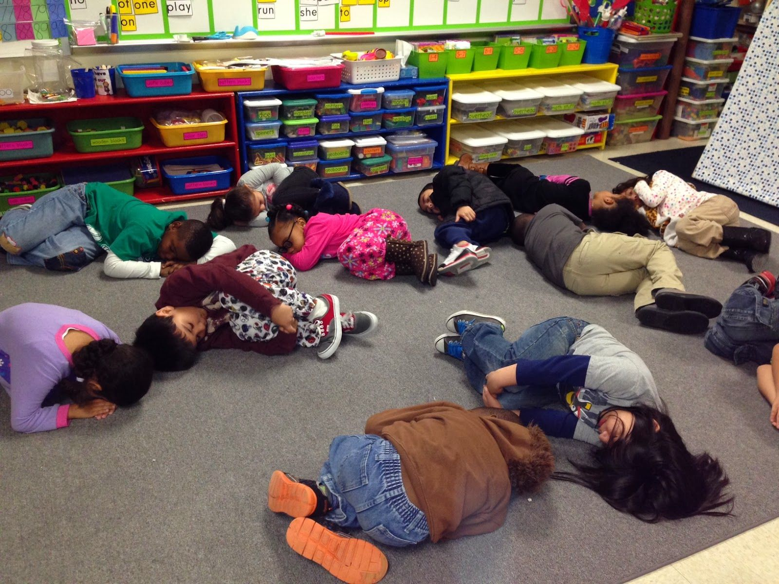 Groundhogs Hibernation And Nonfiction Text Features