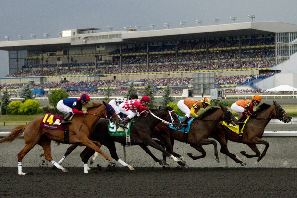 Woodbine Racetrack Events Calendar