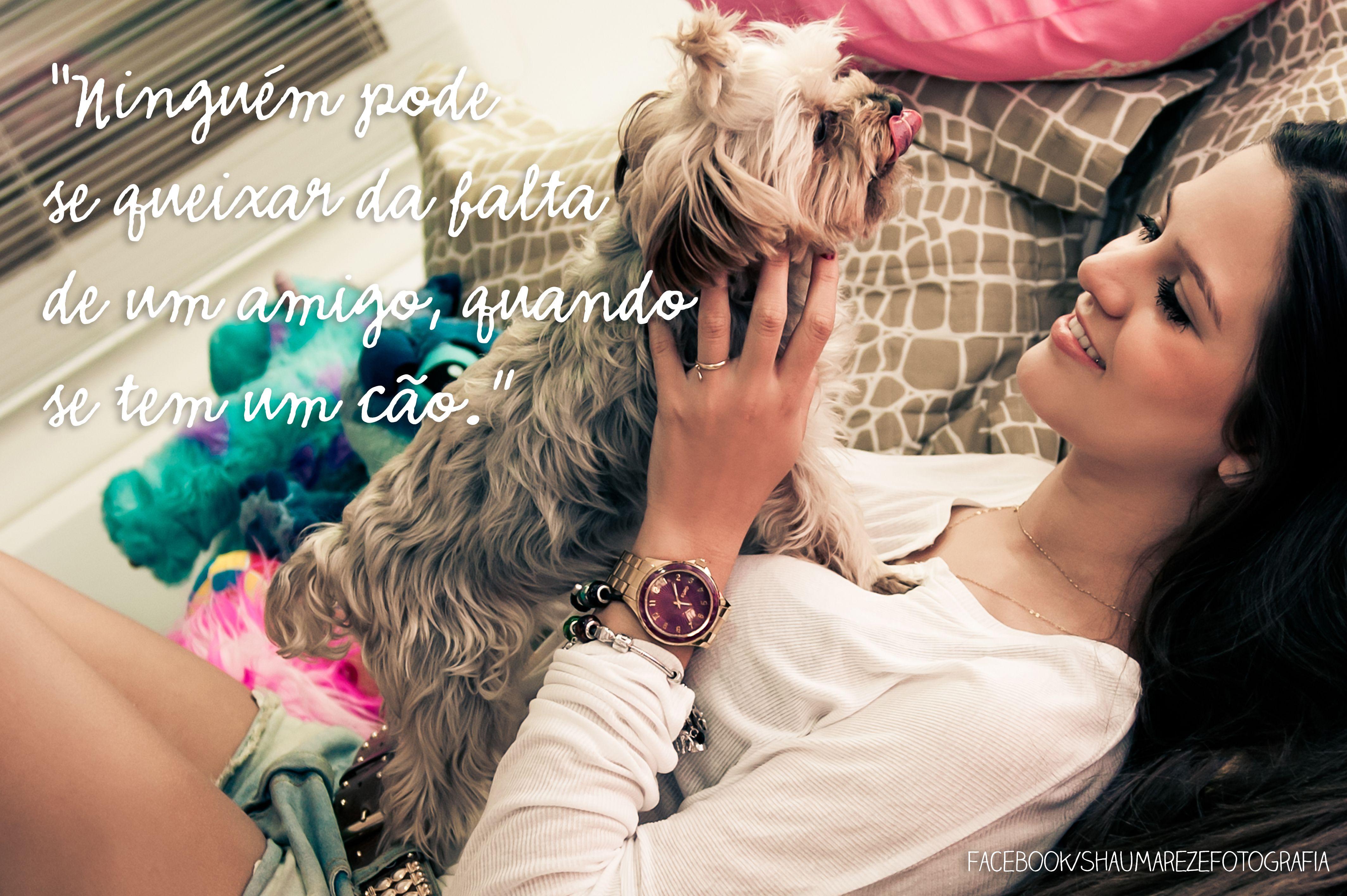 """""""Ninguém pode se queixar da falta de um amigo, quando se tem um cão."""" - Marquês de Maricá"""