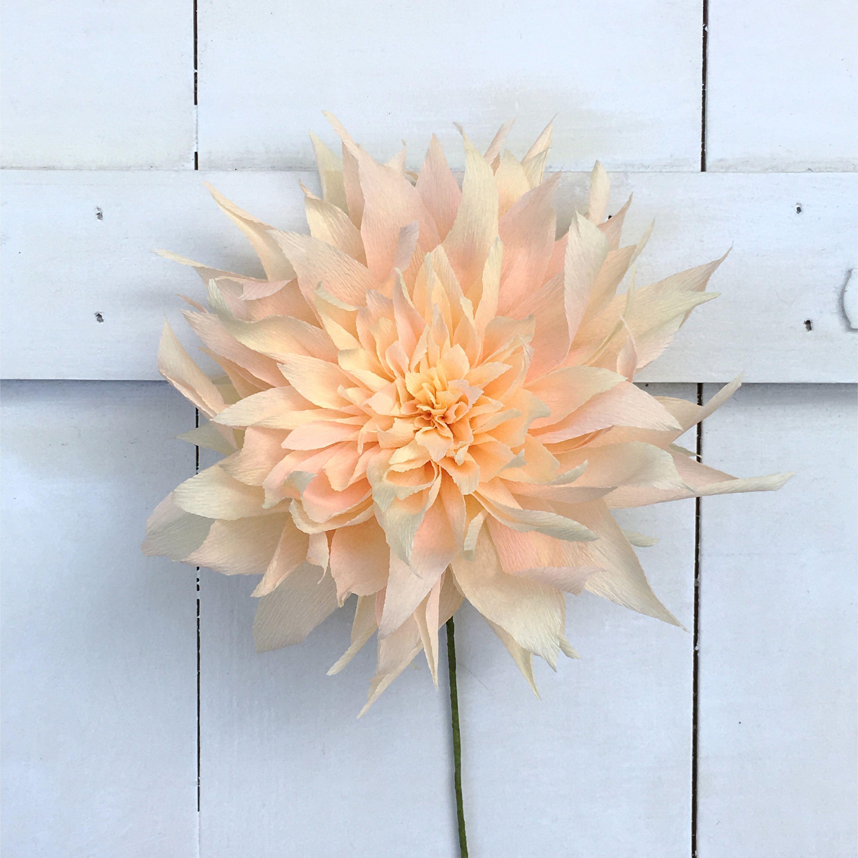 Crepe paper cafe au lait dahlias stems paper flower artesanatos
