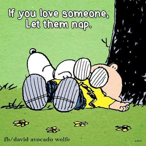 Let Them Nap Snoopy Quotes Snoopy Love Charlie Brown