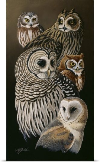 Eyes Of The Night Owls Owl Canvas Art Owl Wall Art Owl Artwork