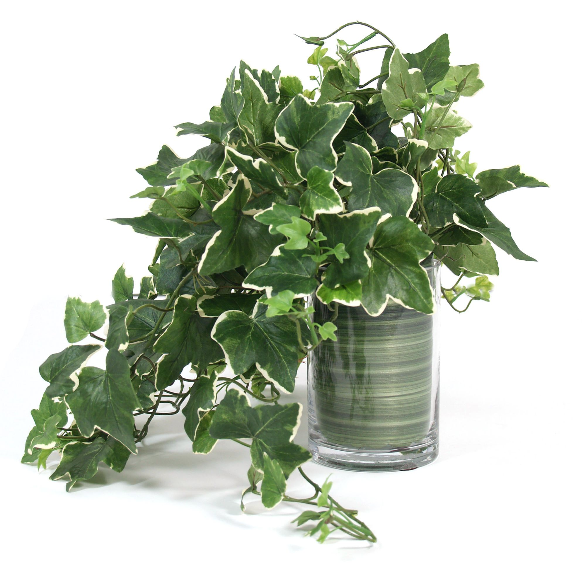 Creative Displays Faux English Ivy Plant In Glass Vase