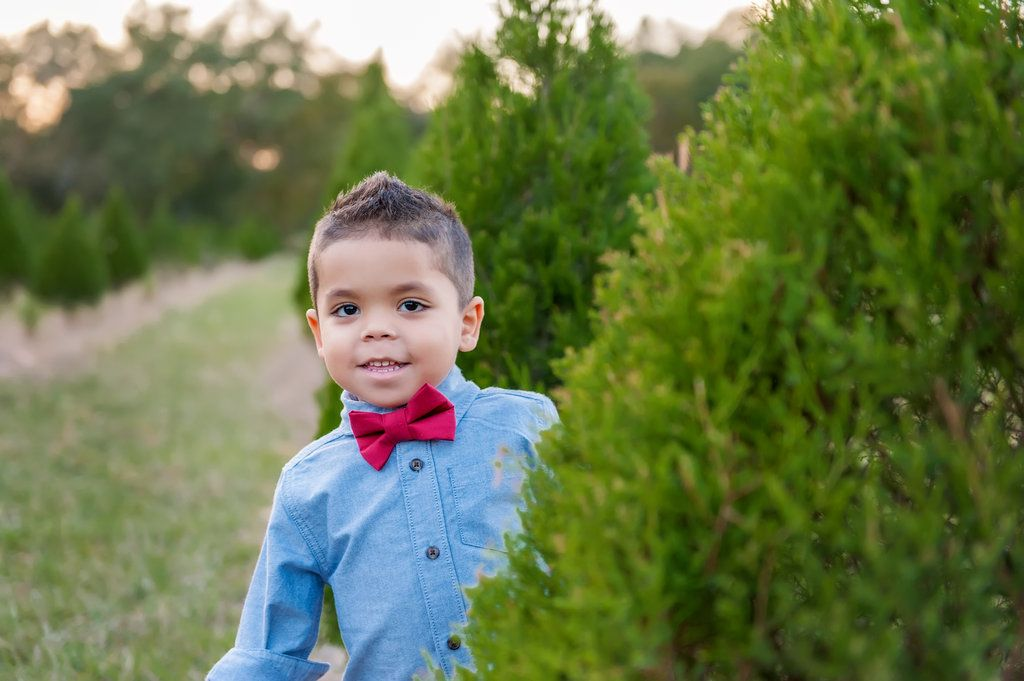 Adorable Christmas Tree Farm Family Portraits At Santa S Christmas Tree Forest In Eustis Florida Christmas Portraits Christmas Tree Forest Holiday Photography