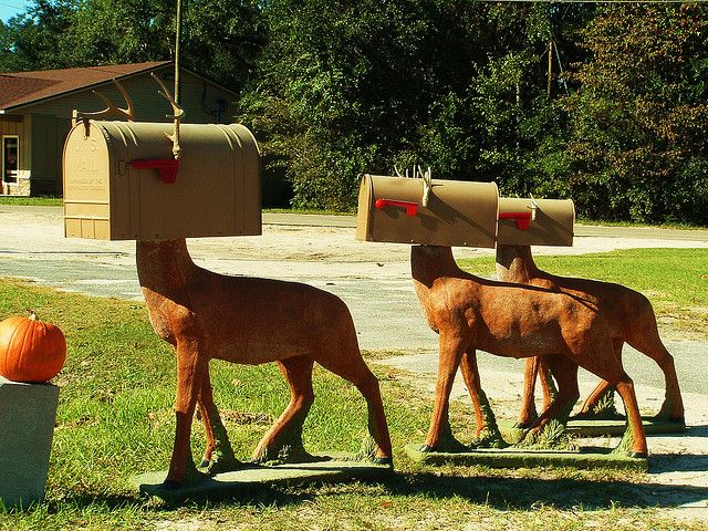 Deer With Mailbox Heads Mailbox Design Funny Mailboxes Cool Mailboxes