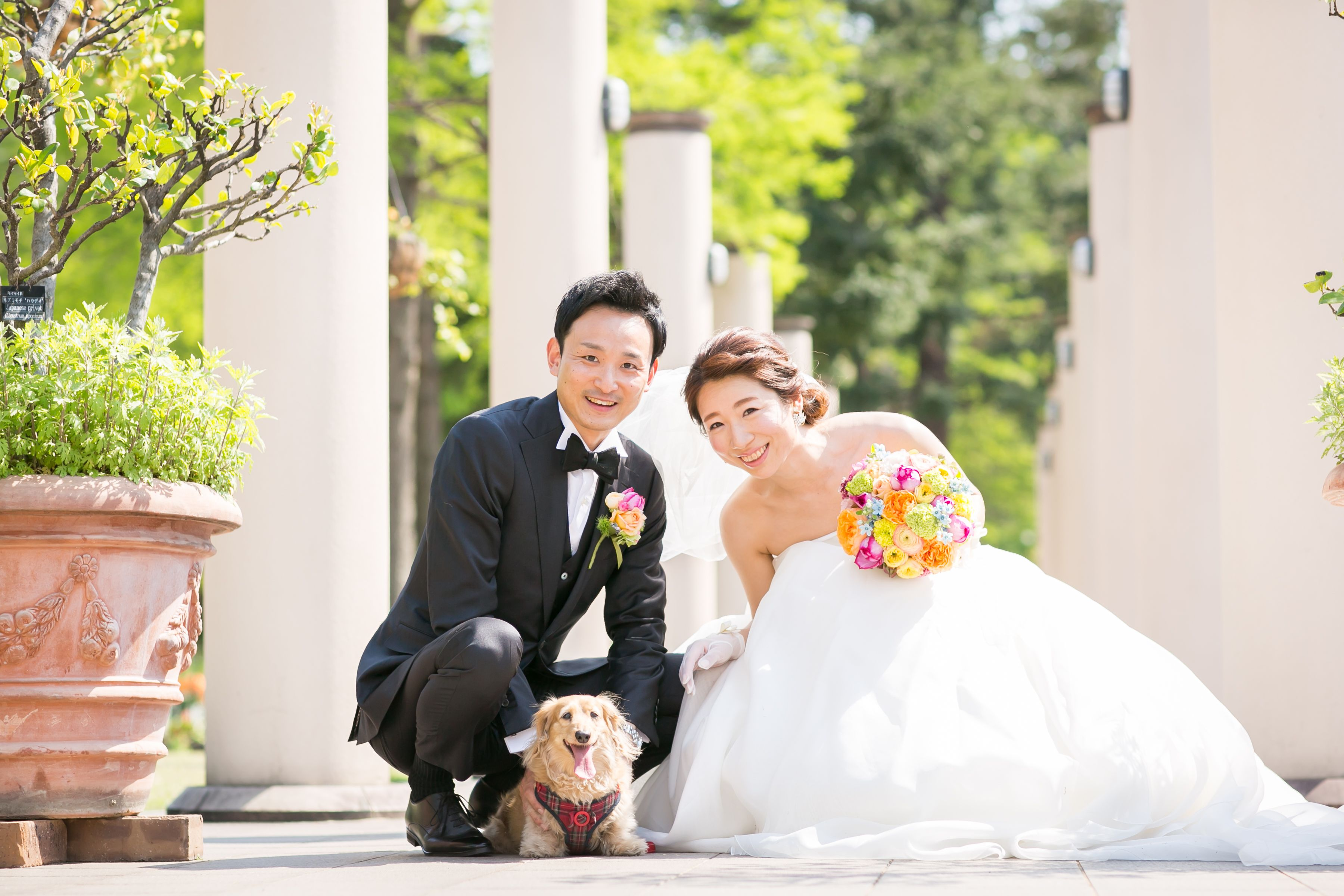 フォトウェディング 前撮り 犬と前撮り 犬とフォトウェディング ガーデン ナチュラル フラリエ ウェディング ウエディング ガーデンウェディング