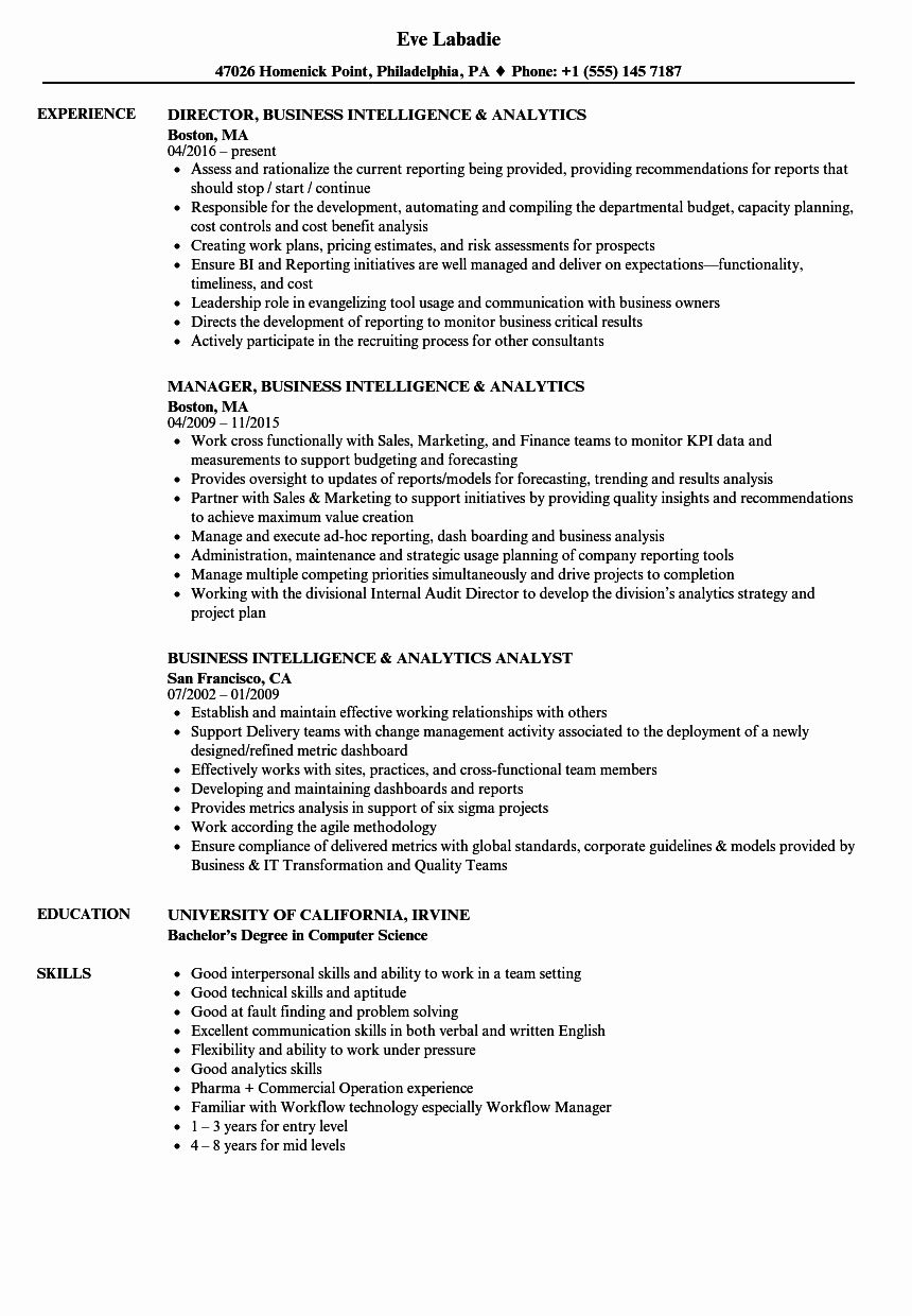 Business Analyst Intern Resume Best Of Business