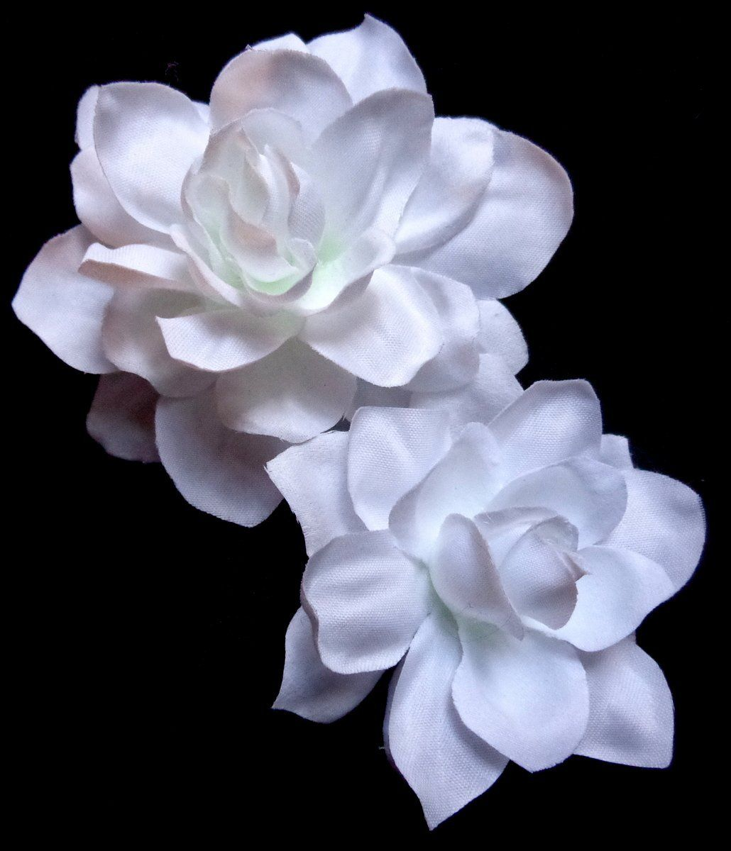 Gorgeous White Gardenia Hair Flower Set Of Two This Is An Amazon Affiliate Link Find Out More About The Great Produ Flowers In Hair White Gardenia Flowers