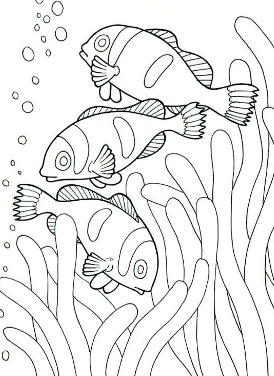 Creatures Great and Small sea prints to color Recherche