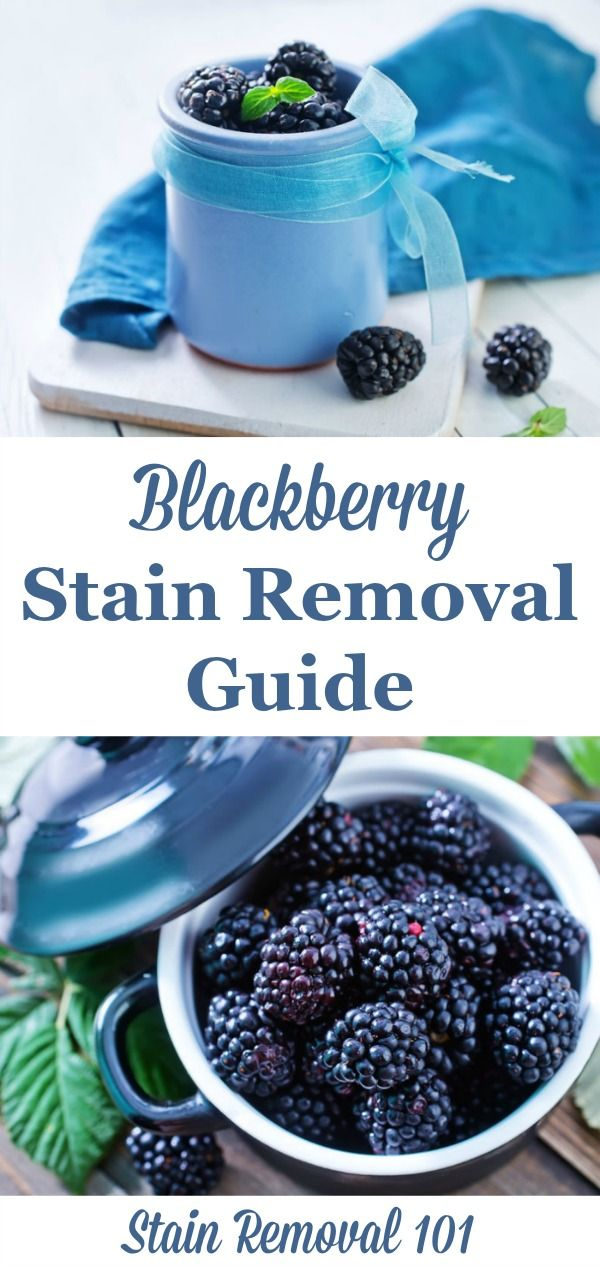 Blackberry Stain Removal Guide Stain Removal Tips