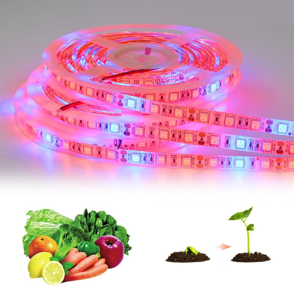 5050 Led Phyto Lamps Strip Light 300 Leds 5 Meters Full Spectrum Led Grow Lights Fitolampy For Indoor Plants Grow Lights Led Grow Lights Grow Lights For Plants