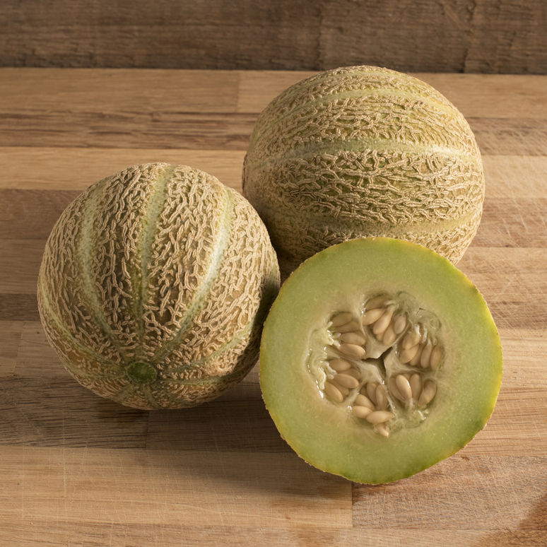 Eden S Gem Organic Melon Seed Johnny S Selected Seeds Cantaloupe And Melon Heirloom Seeds Seeds It is also known by other names like muskmelon, rockmelon, sweet melon, and spanspek. eden s gem organic melon seed