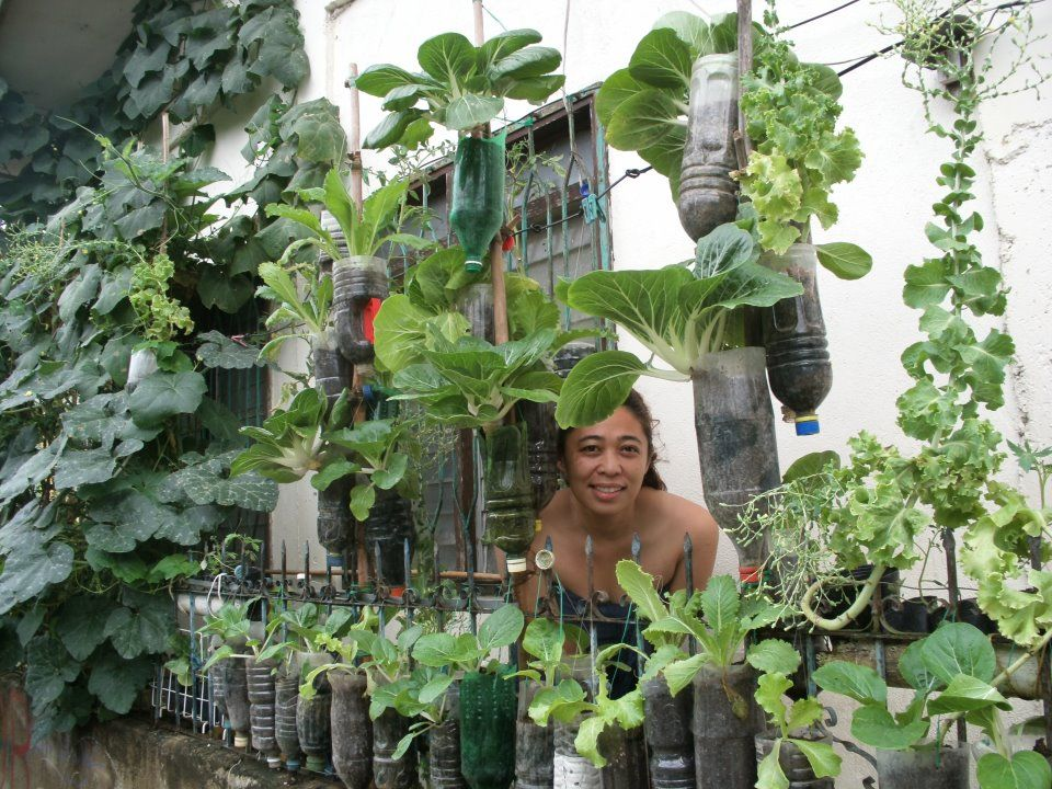 Build Verticle Garden | ... To Design A Vertical Garden That Suits Your  Vegetable