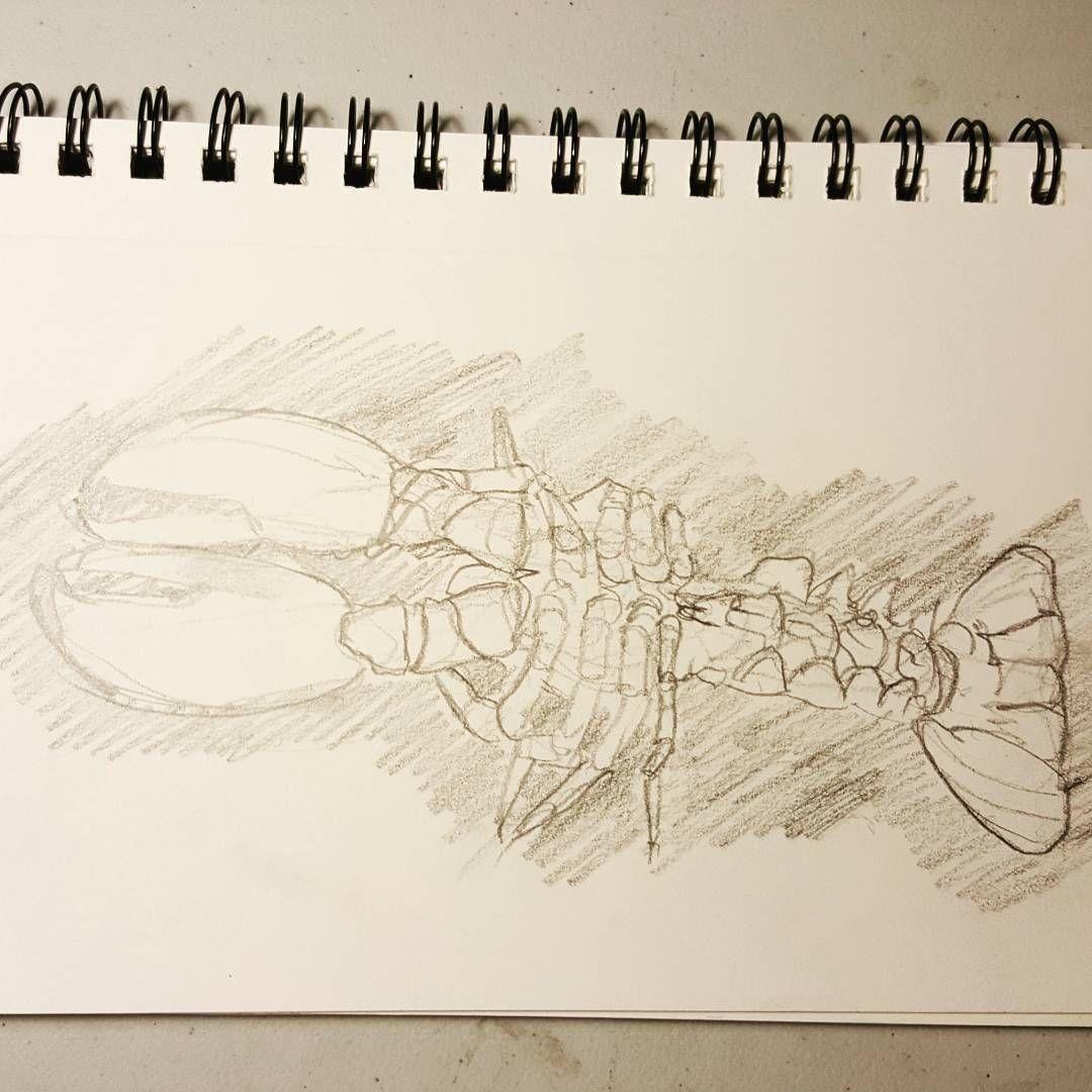 Crabbing Season   Crab   Pinterest