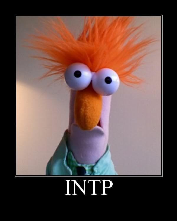 Muppet Christmas Meme: Chistes, Memes Y Buen Humor