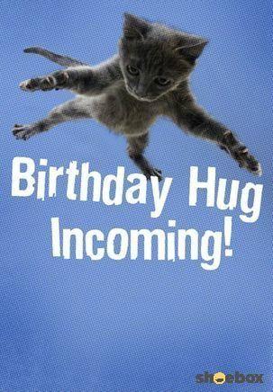 Birthday Hug Incoming Photo Joyeux Anniversaire Anniversaire