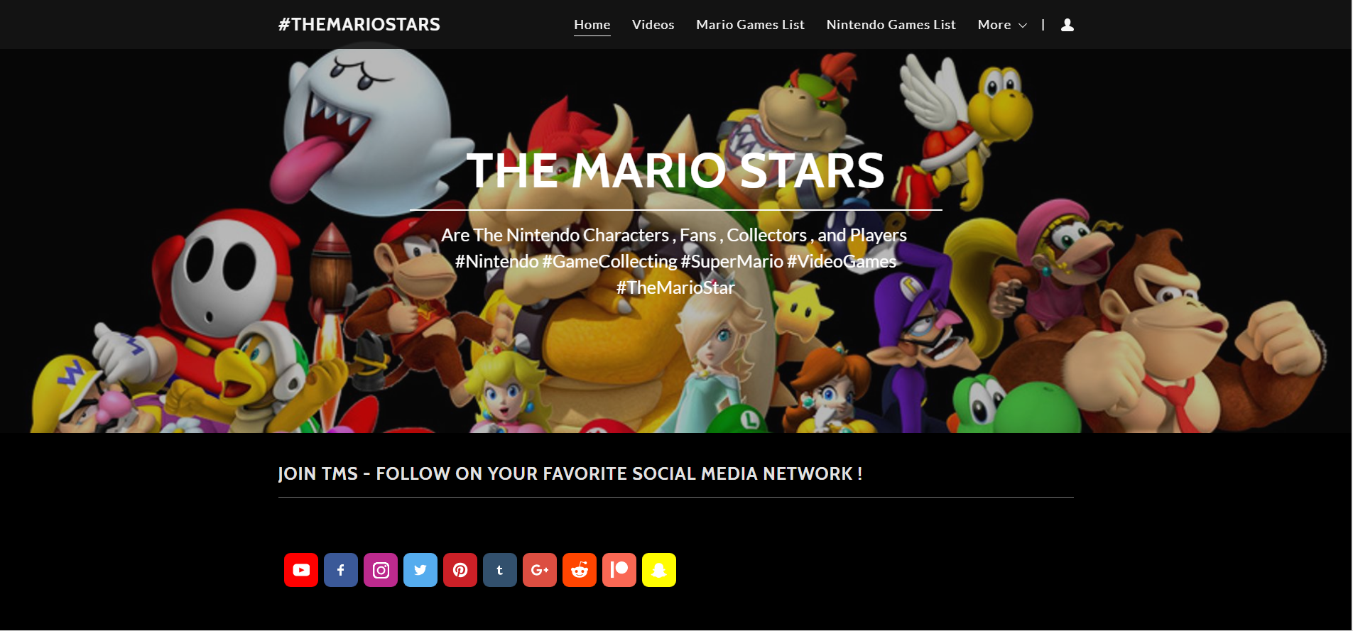 THE MARIO STARS  com Are The Nintendo Characters , Fans