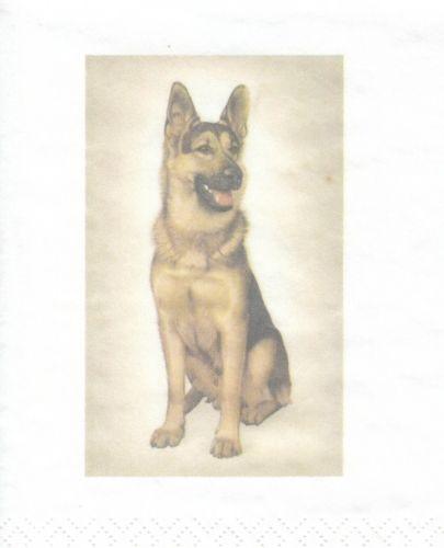 1-Lunch-Serviette-Napkin-3-lg-Motiv-2x-auf-Serv-DB59-Schaeferhund
