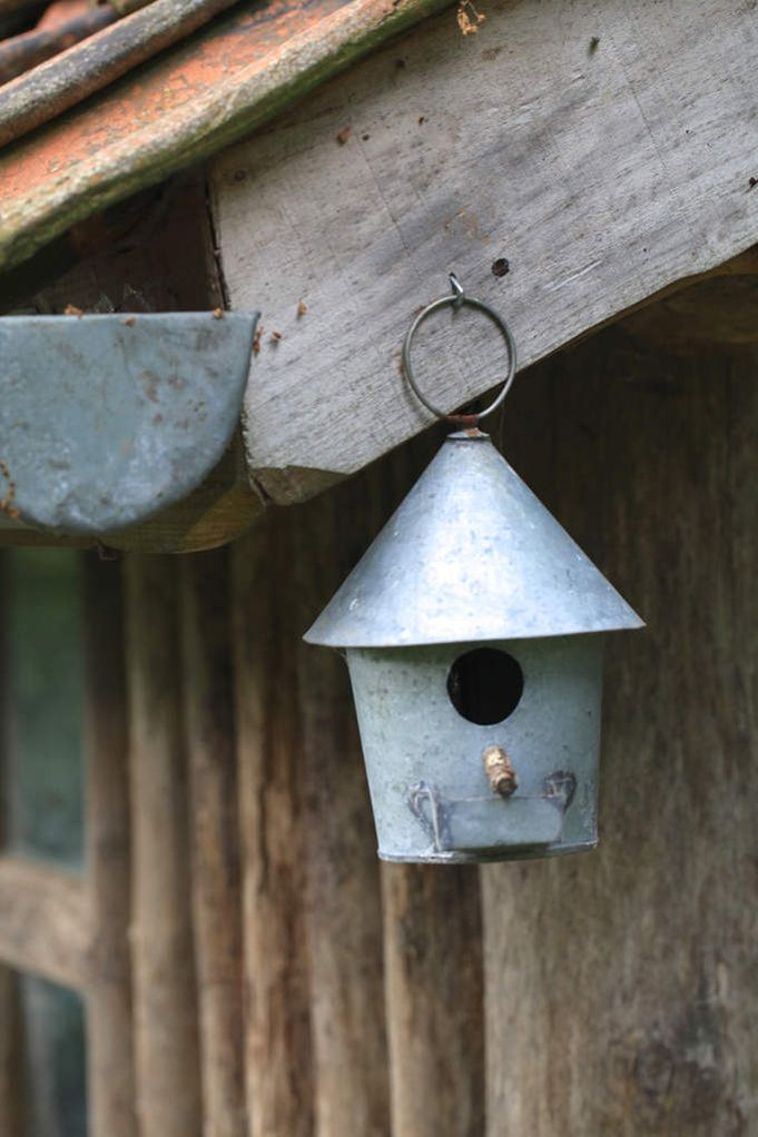 un abri pour les oiseaux refuges les oiseaux et nichoirs. Black Bedroom Furniture Sets. Home Design Ideas