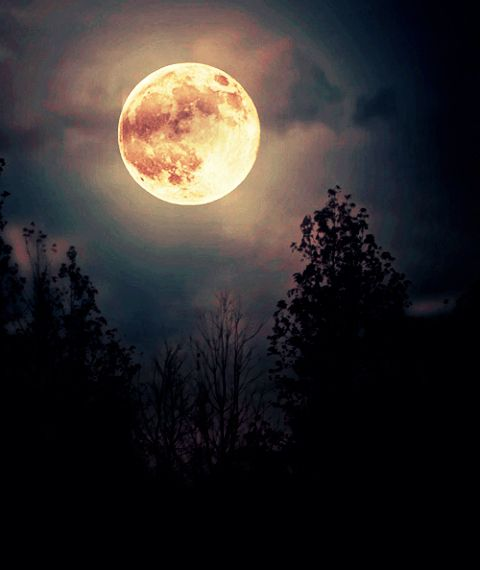 Las etiquetas más populares para esta imagen incluyen: night, moon y photography