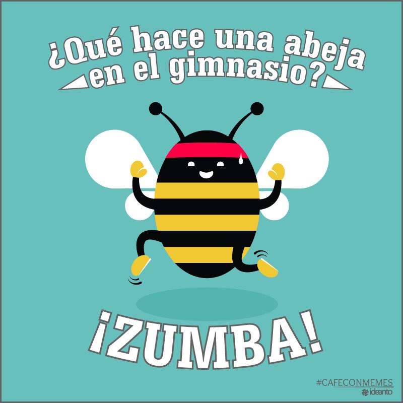 Qu hace una abeja en el gimnasio zumba ejercitate for En el gimnasio