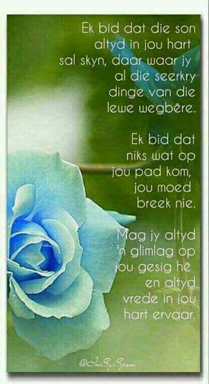 Pin by marian van zyl on special quotes pinterest afrikaans afrikaans hoop birthday cards special quotes prayer christian verses inspirational quotes greeting cards for birthday m4hsunfo