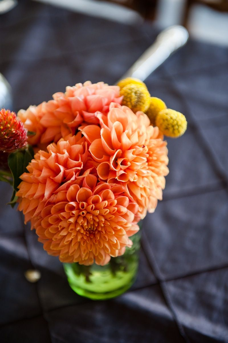 Best Fall Flowers For DC Area Weddings From Top Local Florists