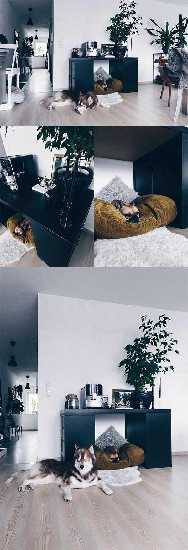 diy hundeh tte f r die wohnung selber bauen inklusive praktischem stauraum an elephant 39 s. Black Bedroom Furniture Sets. Home Design Ideas