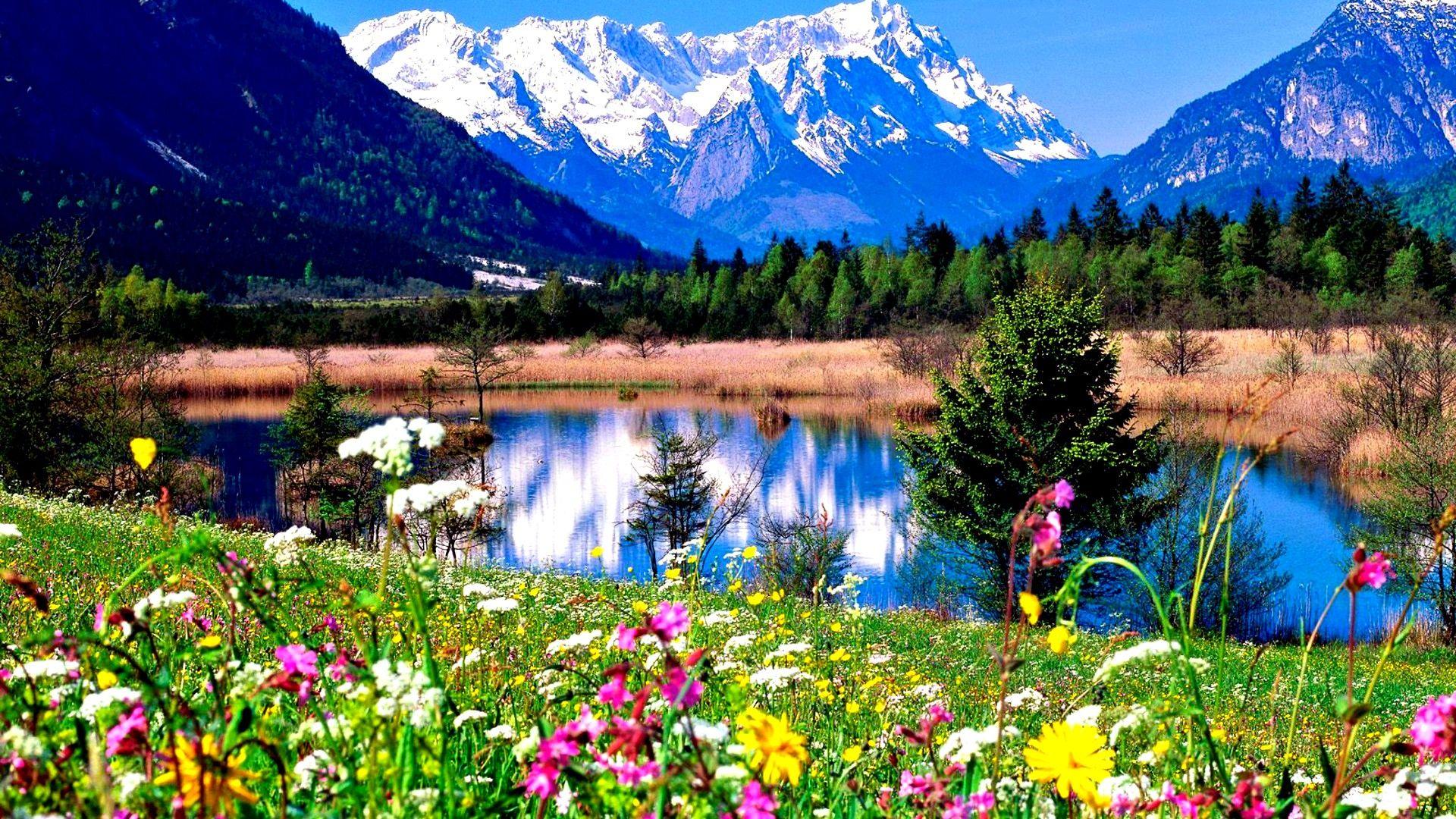 Красивые картинки природы пейзажи весны
