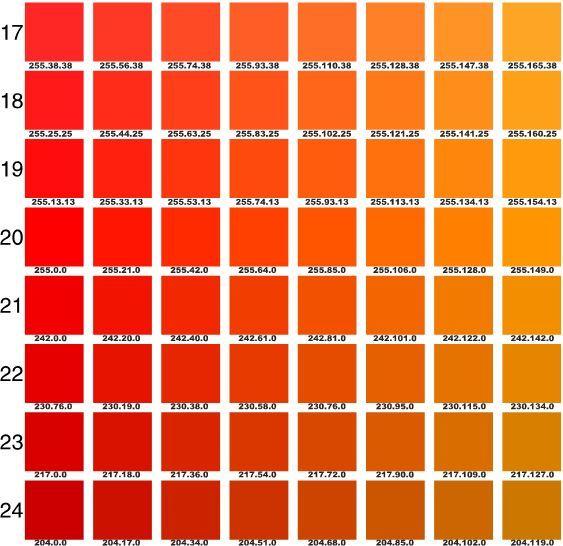 Pantone Oranges  Brand Inspiration Board    Pantone