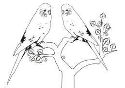 ausmalbilder tiere: malvorlagen | bastelvorlagen |tiere zum ausmalen | ausmalbilder tiere, tiere