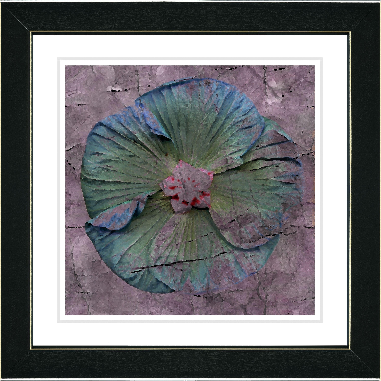 Studio Works Modern 'Mudflower - Blue' Framed Print