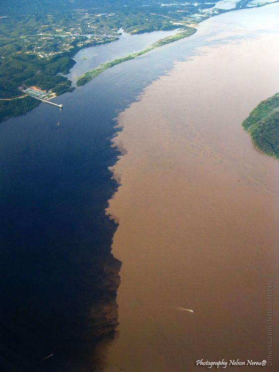 amazon river and black meet
