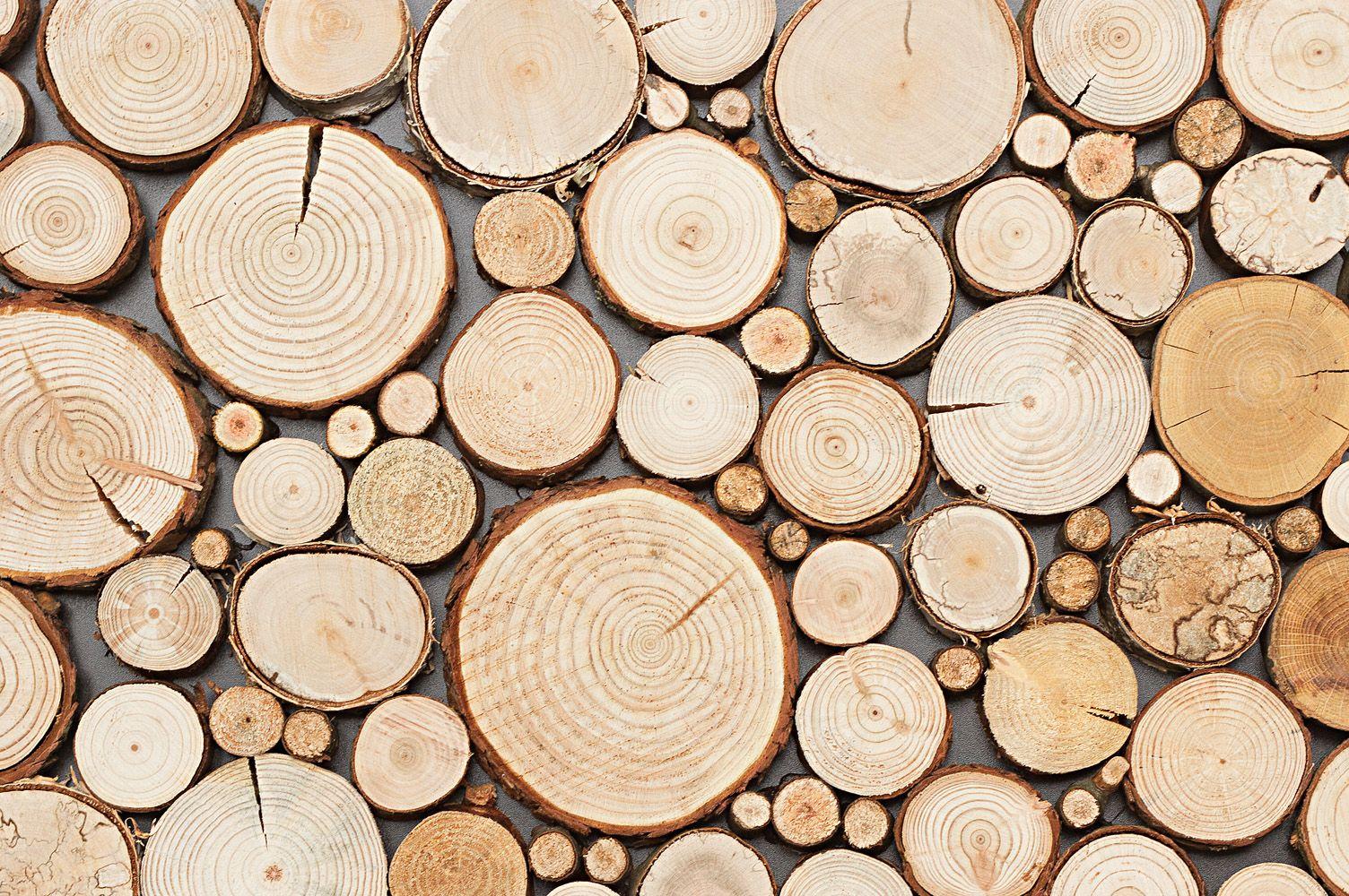 Panel Dekoracyjny Panel Drewniany Wood Collection