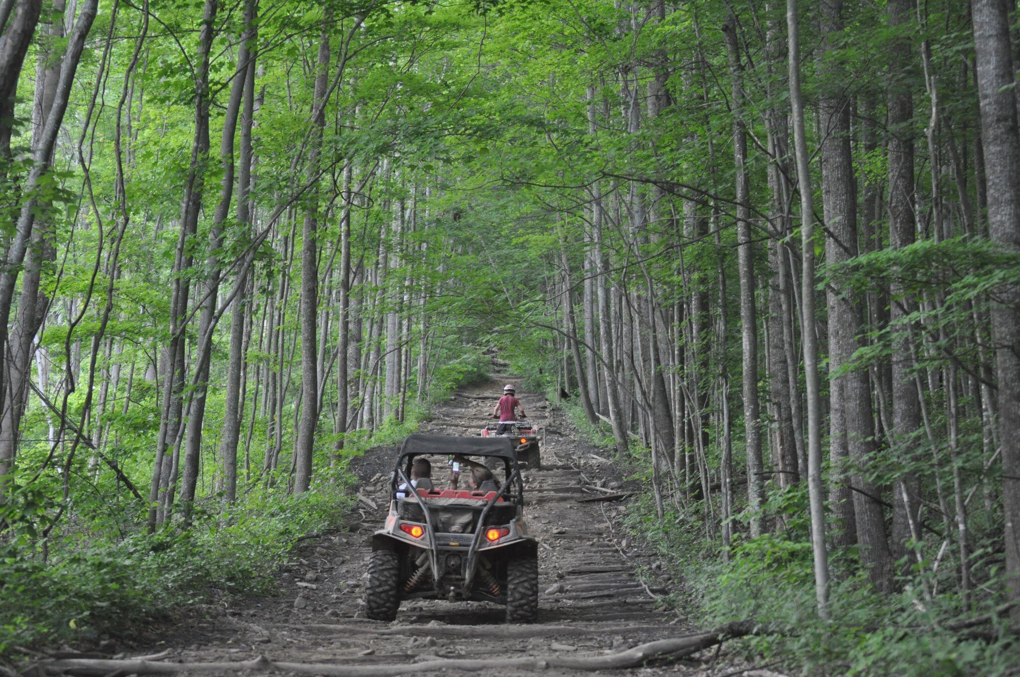 Steven Creek Honda >> Windrock ATV Park, Oliver Springs, TN. Coal Creek | Been There, Go There | Pinterest | Atv and Park