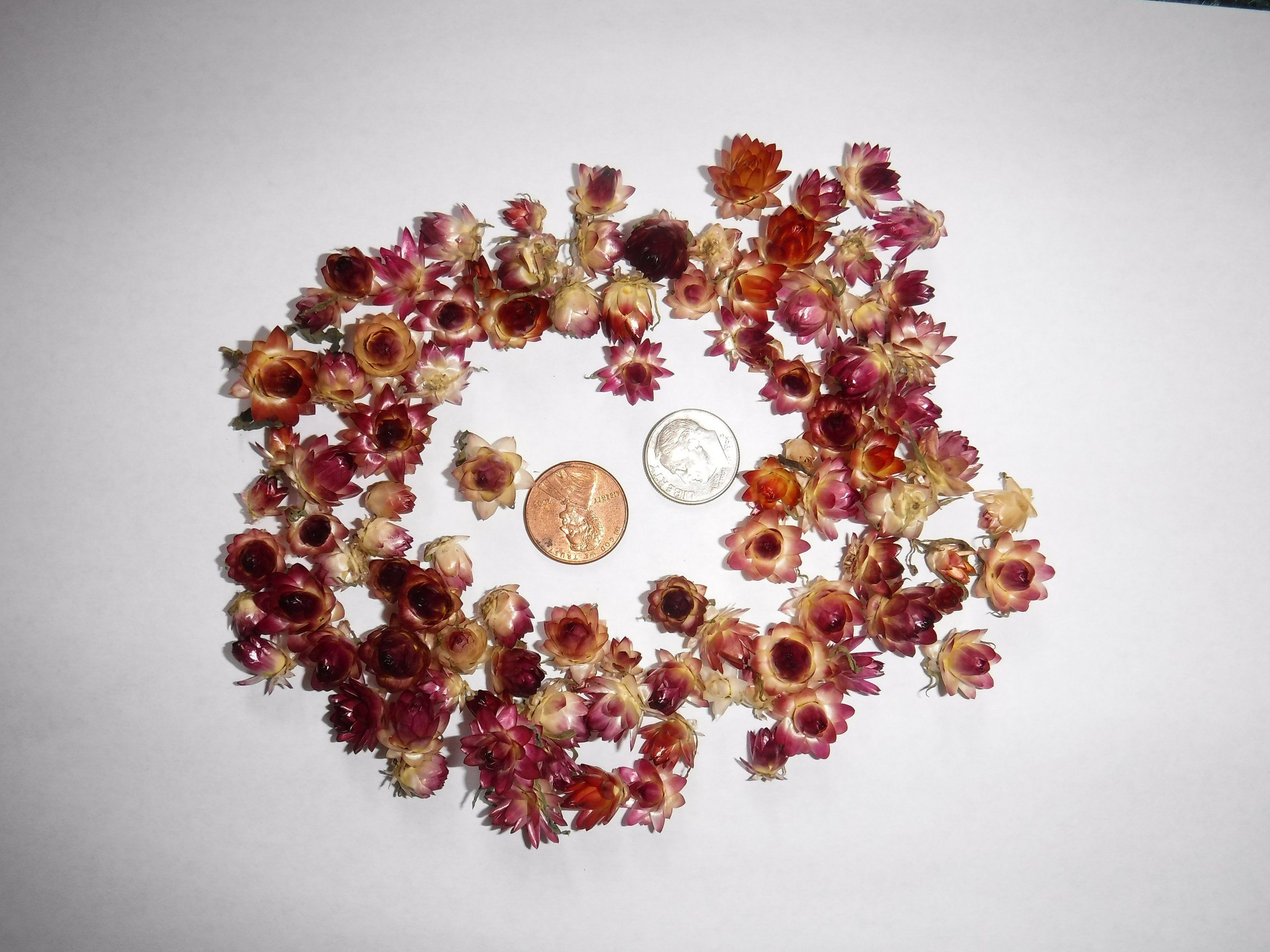 Dried Flowers for Jewelry Small Bouquet Dried Flowers for Candles Small Dried Flowers for Resin Small Dried Flower Tiny Dried Flowers