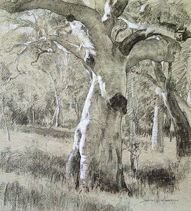 Pin By Sherry Schmidt Watercolors On Master Copy Painting Landscape Drawings Tree Drawings Pencil Landscape Artist