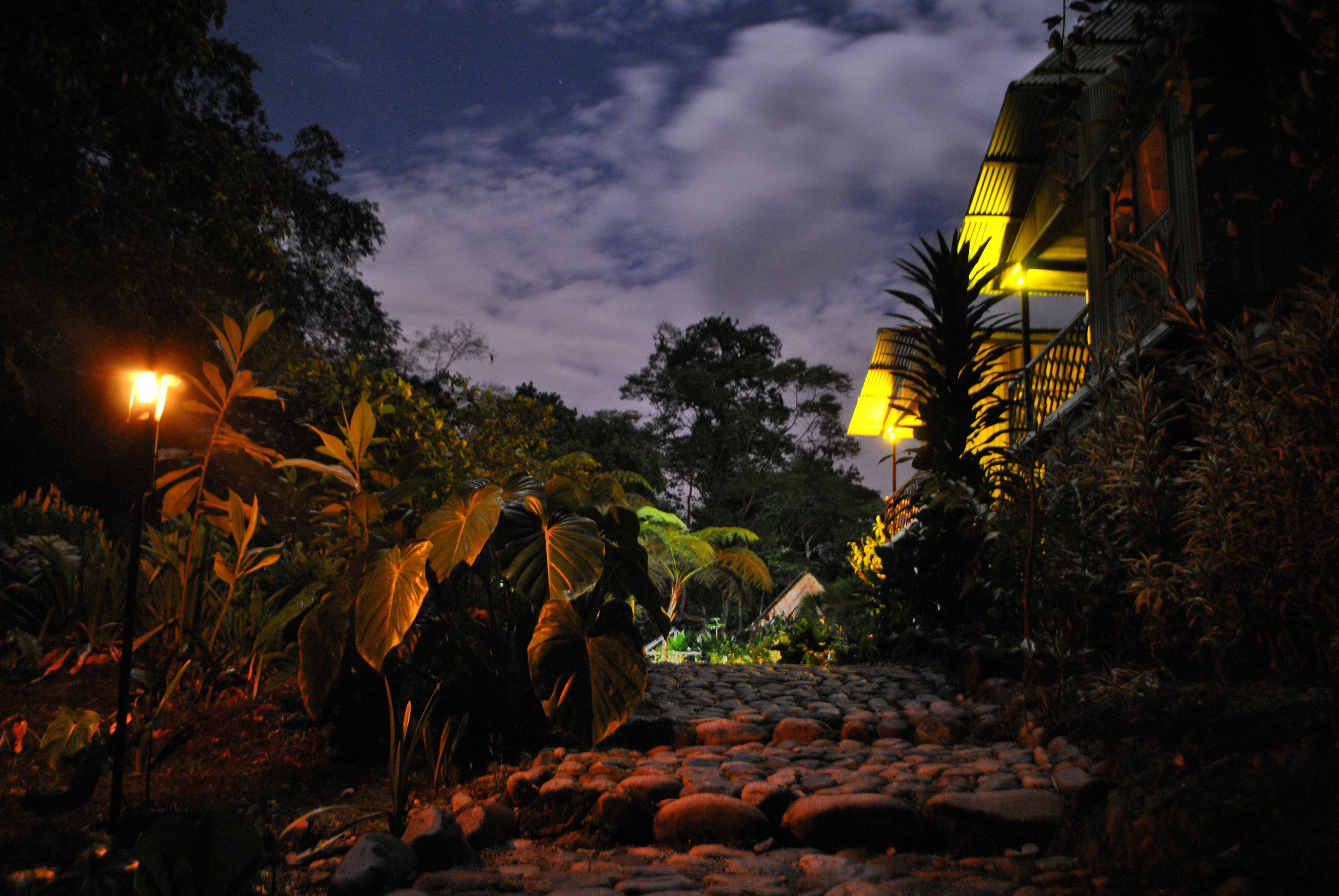 Cabañas frente al río en la selva con noche de luna llena. www.playaselva.net