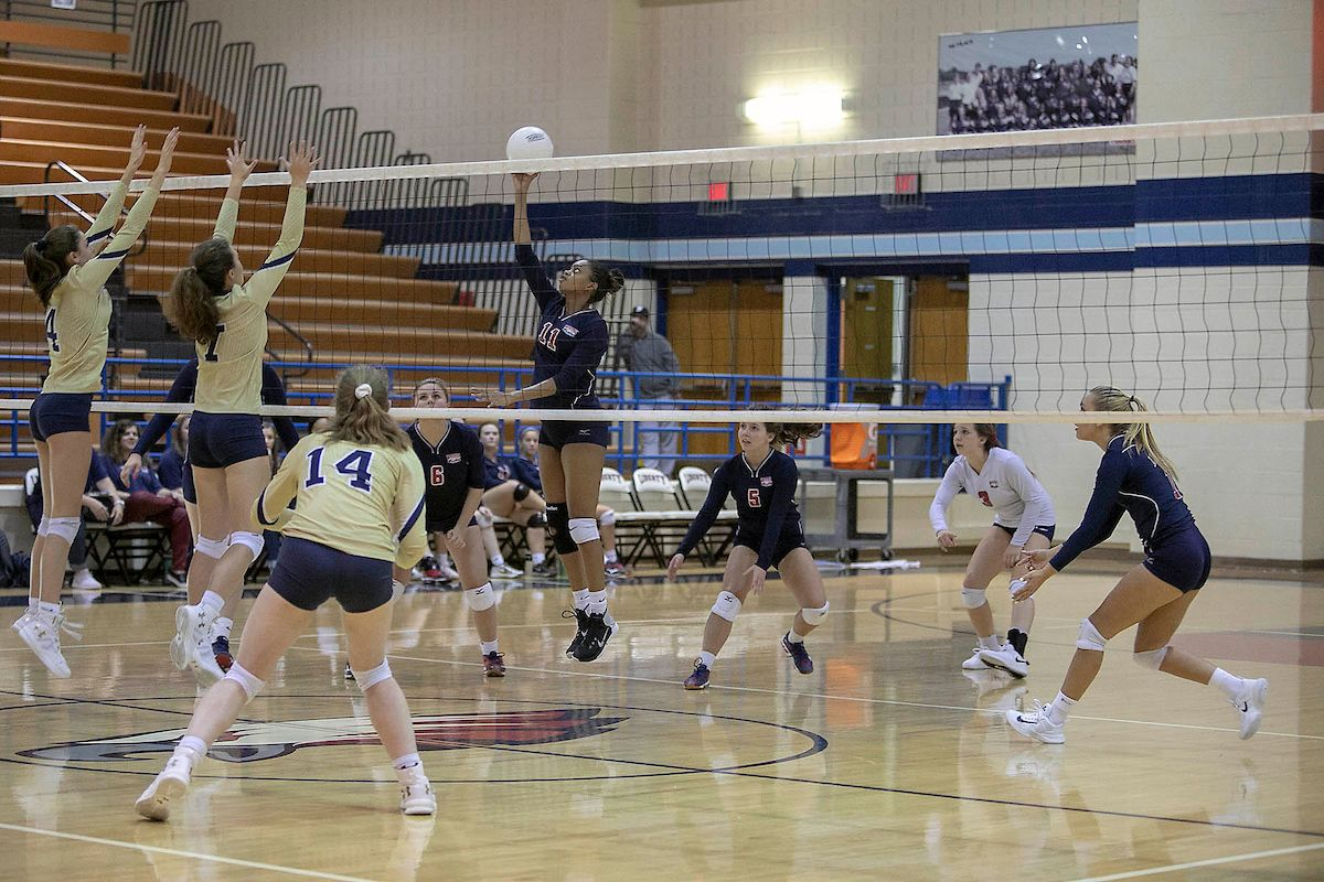 Pin By Talon Yearbook On 2019 Volleyball Volleyball Basketball Court Basketball