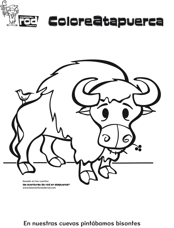 11-dibujos-para-colorear-animales-bisonte.jpg (2322×3054 ...