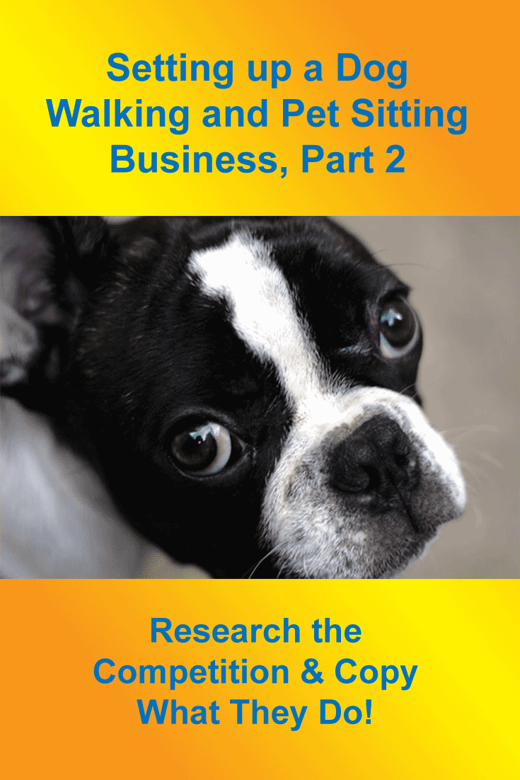 Setting Up A Dog Walking Business Pt 2 Research The Competition