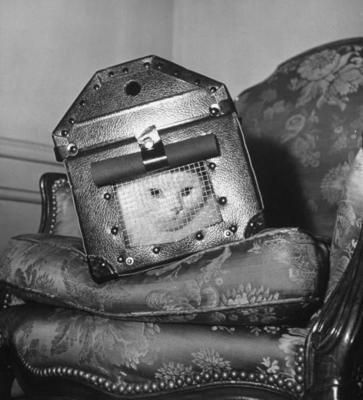 English cat in reinforced carrier during WWII - his own personal bomb shelter.