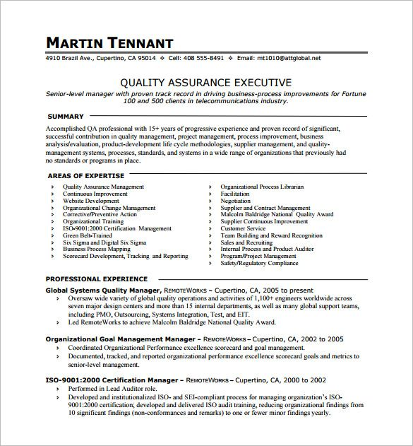 Should A Resume Go Over One Page  Vision Professional  Essay