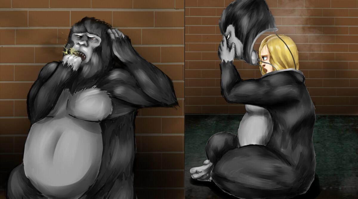 gorilla-suit-porn-youngest-schoolgirl-porn-movies