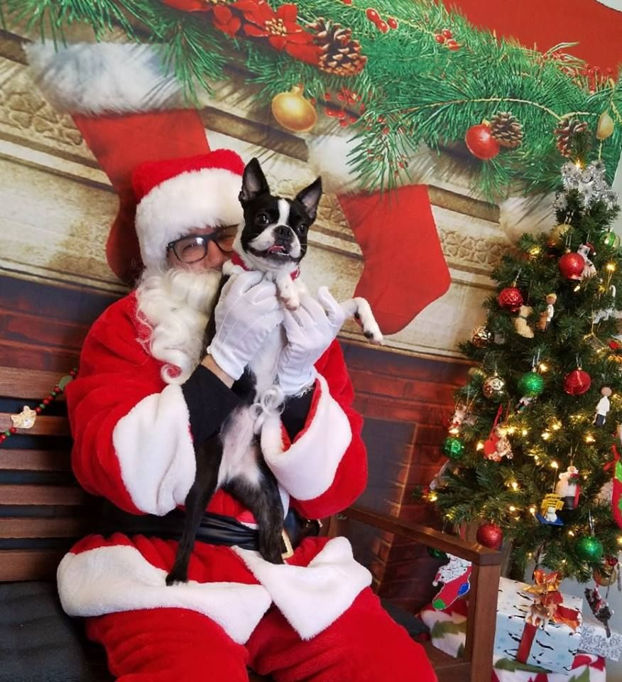 Free Santa Photo Day This December 9th 2018 From 10am to