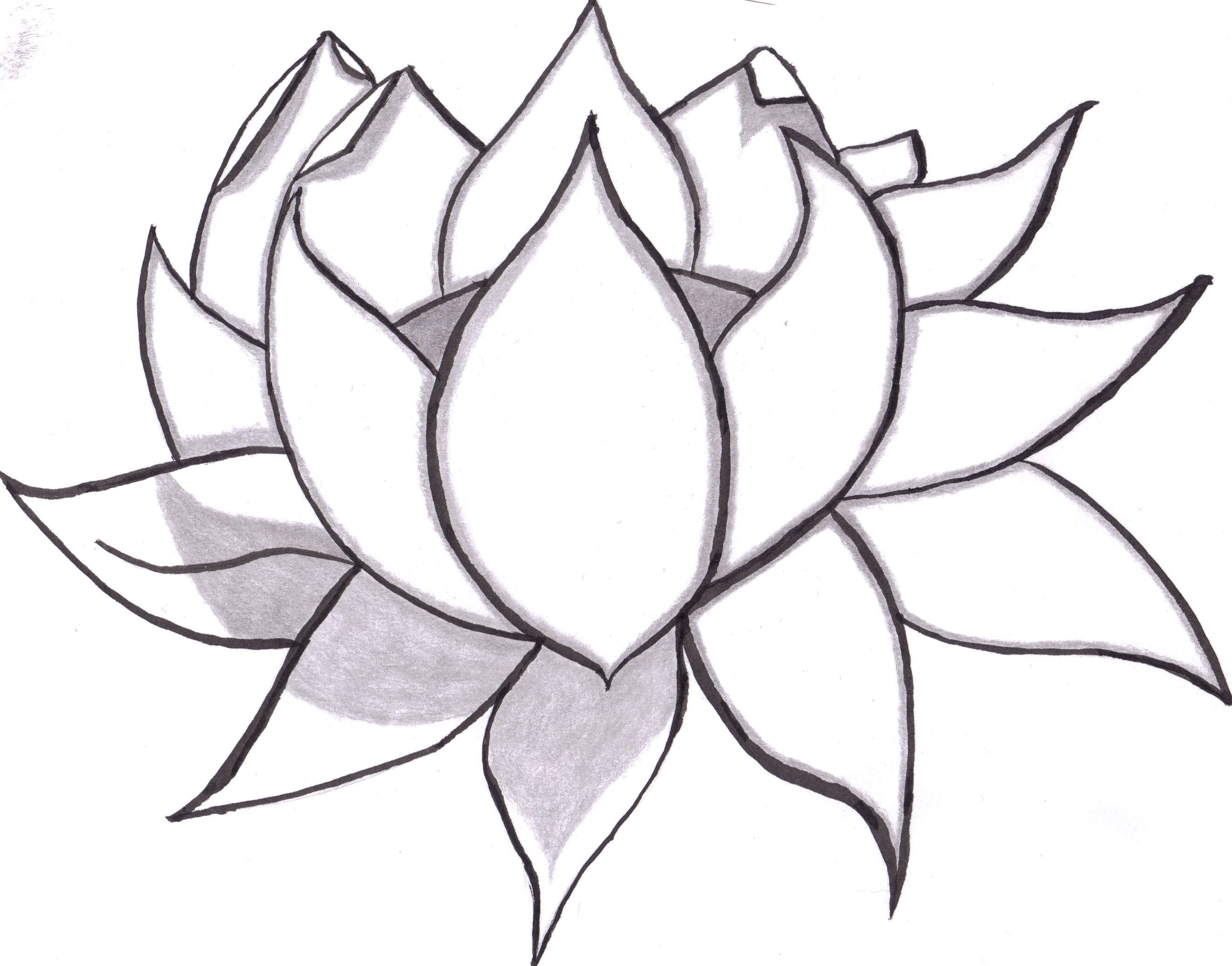 Flowers Drawings In Pencil Free Large Images Easy Flower Drawings Pencil Drawings Of Flowers Simple Flower Drawing