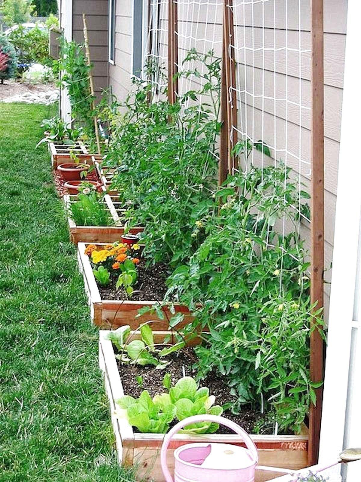 Just Another WordPress Site Vegetable Garden Design Garden Layout Vegetable Backyard Vegetable Gardens Backyard vegetable garden ideas diy